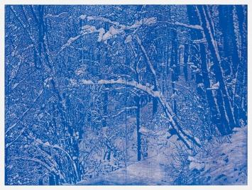 Franz Gertsch · Winter, 2016, Holzschnitt, 190x255,6 cm, Druck in Ultramarinblau auf Japanpapier