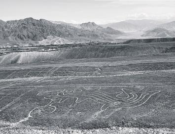 Geoglyphe eines Wals (Orca), Nasca, 2017. Foto: Alfonso Casabonne