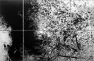 André Gysi, Helle Dunkelheit, 2001, 8-teilig Fotoarbeit, 130 x 200 cm