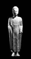 Stehender Buddha, nördliche Qi-Dynastie (550–557), Kalkstein, Höhe 125 cm. Der Buddha trägt über einem Wickelrock und einem Obergewand einen wadenlangen, sich dem Körper eng anschmiegenden Überwurf. Die Falten dieses Überwurfs, die sich im Schulterbereich verdichten und in ihrer regelmässigen Anordnung wie aufgesetzte Grate wirken, zeichnen die weichen Körperformen des Buddha deutlich nach. Von der linken Schulter aus bildet die Falte, die dem Halsausschnitt am nächsten ist, eine bis auf Nabelhöhe leicht schräge, dann bis zum Gewandsaum gerade abfallende Linie. Rechts und links der Linie bildet der Stoff bogenförmige Falten. Diese Art der Gewanddarstellung findet man bei einer ganzen Reihe von Skulpturen aus Qingzhou. Es scheint sich hier um einen bestimmten Typus im Repertoire der Bildhauer zu handeln. Das Schema ist bei allen Darstellungen identisch, es gibt jedoch Variationen in der Ausarbeitung? Von den Armen abwärts bildet der Saum des Überwurfs parallel fallende Grate, deren geradliniger Lauf die Geschmeidigkeit des Stoffes betont. Diese Geschmeidigkeit erlaubt es, die Form des Körpers unter dem Gewand glaubhaft wiederzugeben. Der Überwurf ist so gerafft und über die Schulter drapiert, dass der obere Saum in einem tiefen Bogen bis zum Brustbein herabfällt. Dadurch gibt er den Blick auf einen schmalen Streifen des über die linke Schulter gelegten Obergewandes frei. Am unteren Ende des Überwurfs ist der knöchellange Wickelrock sichtbar. Der äussere vertikale Saum dieses Wickelrocks ist durch eine Kante über dem rechten Bein markiert. Blöcke parallel eingeritzter Linien deuten die Struktur des Rockstoffes an? (Katalog, S. 154)