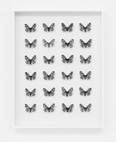 Matti Braun · Ohne Titel, 2009, Schmetterlinge, Seide, Holz, Glas, 70,5 x 54,5 x 10 cm. Courtesy Esther Schipper, Berlin