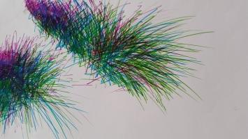 Gräser; 20 x 30cm, Farbstift auf Papier