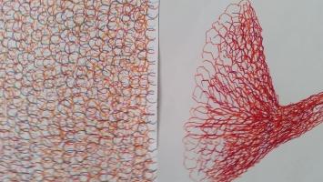 Flora und Fauna: Farbstift auf Papier, 30 x 40cm, 2019