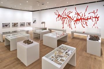 Debris Field, 2019, Installationsansicht Tinguely Museum Basel.Foto: Daniel Spehr