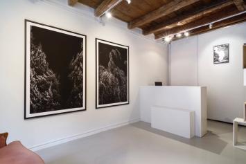 exhibition view, Thomas Maisonnasse Clairière, 11/16
