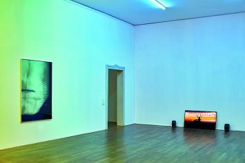 Michael Etzensperger · Abglanz, 2019, C-Print; Spinne, 2019, Videoloop mit Ton
