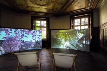 Lynne Kouassi & Daniel Dressel · Habitat, 2019, Ausstellungsansicht Kunsthaus Langenthal.Foto: Martina Flury Witschi