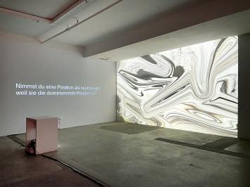 Jeanne Jacob & Mirjam Ayla Zürcher · J'ai des privilèges, donc je peux, 2020, Die dunkle Seite des Löwen, Ausstellungsansicht Kunsthalle Luzern 2020.Foto: Michel Rebosura