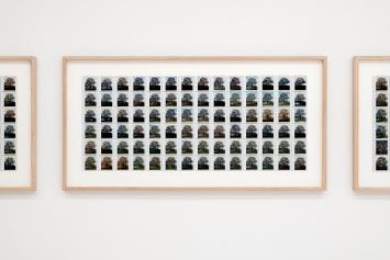 Péter Nádas · Der Baum, 2000–2001, Fotoserie.Foto: Jorit Aust