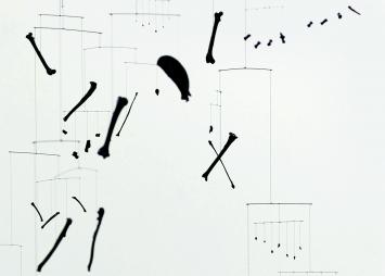 Isabelle Krieg · Schwarzer Katzenreigen, 2018, alle Knochen einer Katze (Detail), Lack, Polyesterfaden, Karbon-stäbe, Epoxidharz, 260cm, 360cm ø ©ProLitteris