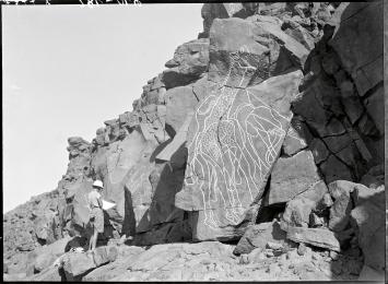 Gravierung, Gruppe von zwei lebensgrossen Giraffen und einem Elefanten, Libyen, Fezzan, Wadi In Habeter, 1932.Foto: Frobenius-Institut