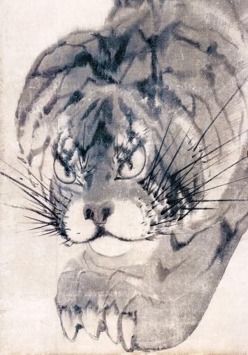 Nagasawa Rosetsu · Tiger, 1786. Detail aus einer Reihe von sechs Schiebetüren; Tusche auf Papier, Courtesy Muryōji, Kushimoto