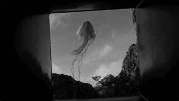Vital Z'Brun, Le ballet de ma solitude–Fishes are the birds of the water, 2020, H-Video, s/w, Ton, 3'37''