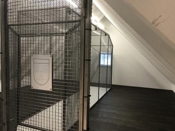 Ausstellungsansicht, Simon Kindle, Meggen likes Me, 2018