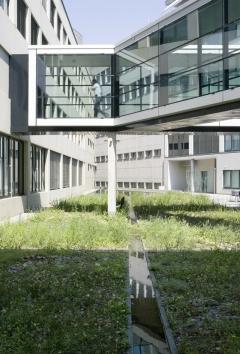 Monika Ebner, Wassergarten, 1998 , Kanalsystem, Pionierpflanzen, Kies, Glas, Raiffeisenbank, Installation: Innenhof Gartenstrasse/Wassergasse, St.Gallen. Foto: Susanne Stauss