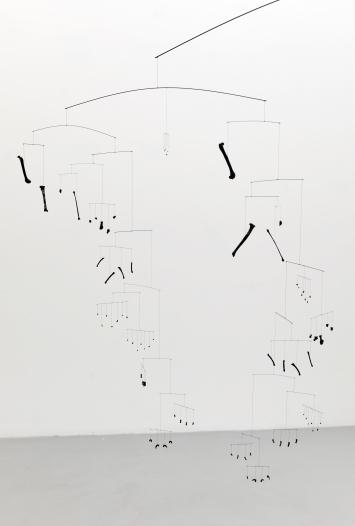 Schwarzer Katzenreigen, 2018, alle Knochen einer Katze, Lack, Polyestergarn, Epoxidharz, Carbonstäbe, 260x360cm, Kunstsammlung Kanton Zürich ©ProLitteris