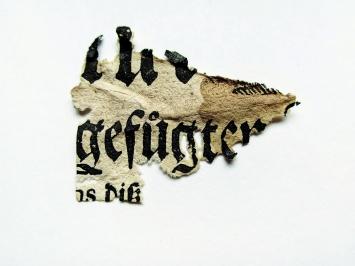 Debris Field, 2010–2016, Initialen der Silberfischchen, 18.Jahrhundert, bedrucktes Papierstück