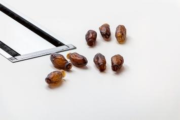 Date Series (Medjool), 2017, Glas, Grössen variabel, 50 Unikate, Ausstellungsansicht Ventilator, Tel Aviv