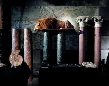Ohne Titel, Kapitel ‹Evolution›: Präparierter Löwe, Summers Place Auctions, Billingshurst, Grossbritannien, 25.11.2015, Inkjet-Print, 145x182cm. Courtesy Parrotta Contemporary Art