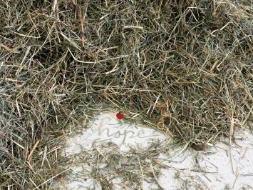 Der Heuhaufen, 2014, Gras getrocknet, Messing, Kunstharzfarbe, Faden, Masse variabel, Ateliersituation: 43x200x180cm.Foto: Christian Hartmann