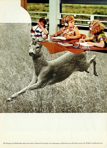 Barbara Breitenfellner · WVZ 118, 2009, Collage, FNAC 09-609, Cnap.Foto: Eponyme Galerie