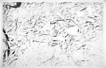 Werner Casty · Valle Bollero 1, 2019, Grafit auf Papier, 150x210cm
