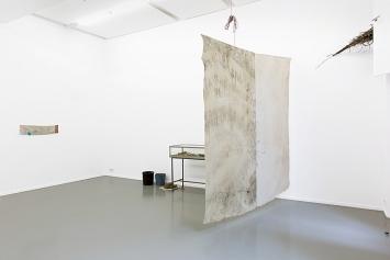 Reto Pulfer· Bourgeon purin pur, 2019, Centre culturel suisse Paris.Foto: Margot Montigny