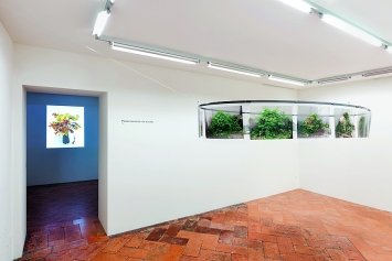 Teres Wydler · Lily's. Artificio in natura, natura in artificio, 2018, video (l); Cà verde, 2002–2018, Installation, 14 Prints auf Transparentpapier auf einer Stahlellipse mit Magneten (r), Ausstellungsansicht Fondazione Erich Lindenberg © ProLitteris. Foto: Robert Marossi