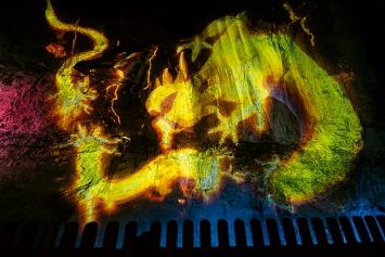Drache oder Feuersalamander? Geheimnisvolles Wesen in der Taminaschlucht