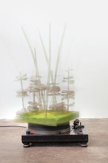 Judit Villiger · Jardin des Plantes I, 2009, Ausstellungsansicht Kunst(Zeug)Haus Rapperswil
