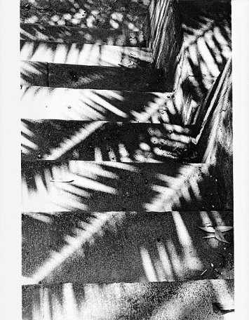 Jochen Lempert · Shadows on Stairs, 2014 © ProLitteris