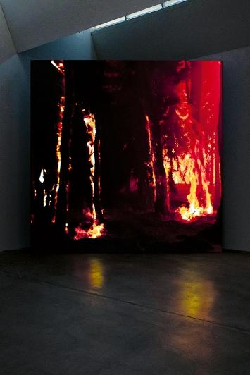 David Claerbout · Wildfire (meditation on fire), 2019–2020, 3D-Animation, Ausstellungsansicht Kunst Museum Winterthur ©ProLitteris.Foto: Reto Kaufmann