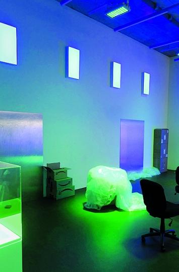Pamela Rosenkranz · Amazon Spirits (Green Blood), 2018, Installationsansichten Karma International Zürich