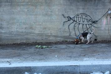 Graffiti «Wanze», Harald Naegeli Foto: Manuela Hitz