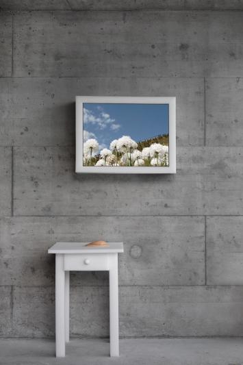 Maria Ceppi - «In Full Blossom #II», Installation mit Video