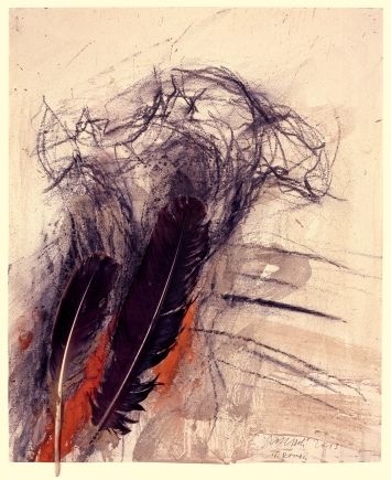 Rolf Iseli, Trompette de la Mort, 2013Federn, Erde, Gouache, Kohle auf Papier, 44 x 36 cm