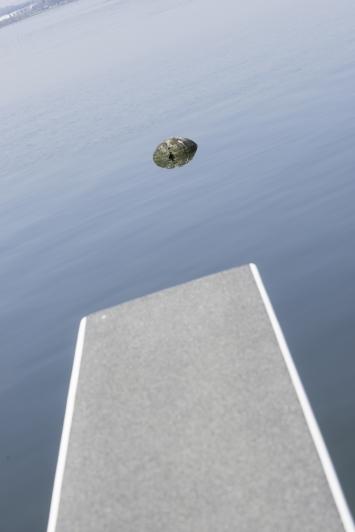 Eugen Jans, Ohne Titel, 2011, Installation, Trauerweidenholz, D 120 cm, Seebad Seeliken, Artherstrasse 2 (im See), Eigentum Stadt Zug