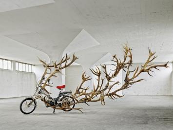 Moonrucker (2013), Sonja Feldmeier (Foto: Mark Nidermann)