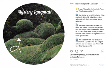 Instagram-Rätsel ‹Mystery Langmatt›: «Wieso ist die Hecke in Form von Vögeln geschnitten?», Screenshot (Instagram: @museumlangmatt)