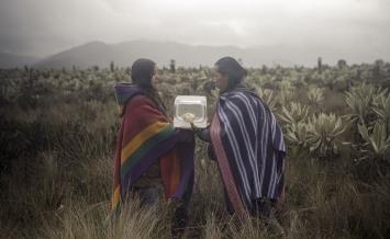 Foto: Felipe Castelblanco and Lydia Zimmermann, 2020