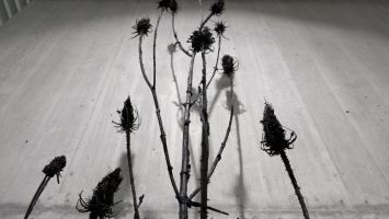 Ursula Palla, wilde karde, 2020,patinierteBronze, 250 x 45 x 32 cm,Kantonales Verwaltungszentrum Sinergia, Chur, Courtesy Kanton Graubünden