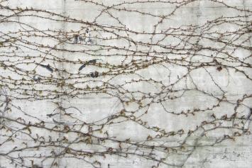 Pavel Pepperstein, Wandmalerei an der Strafanstalt Zug, 2002,Wandmalerei, Acrylfarbe, diverse Masse, Kantonale Strafanstalt, An der Aa 2, Eigentum Kanton Zug, Schenkung Kunsthaus Zug (2002)