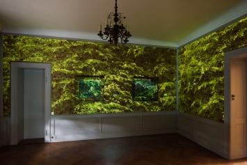 Museum Langmatt, Christine Camenisch/Johannes Vetsch, Fôret embragée, Videoloop, 3-Kanal Videoinstallation, 2019