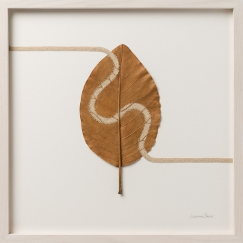 Susanna Bauer, Path lV, 2019, magnolia leaf, cotton threat, 38 x 38cm (photo_www.art-photographers.co.uk)