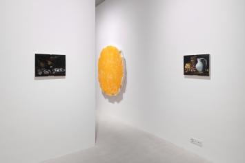Exhibition View Charles Benjamin «Not Again» at Windhager von Kaenel, Zurich, 2020 / Courtesy: the artist and Windhager von Kaenel